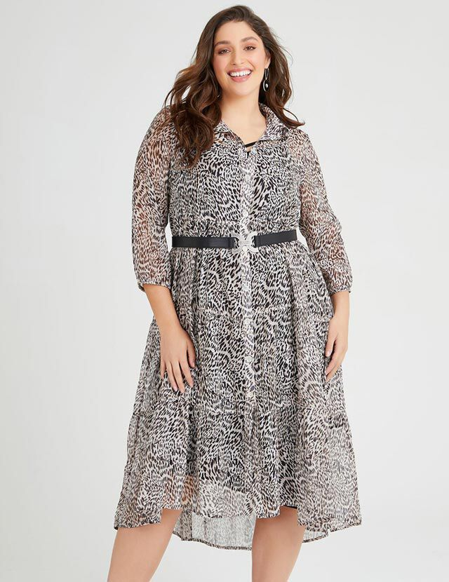 Shirt or Dress