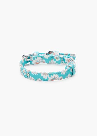 Daisy Buckle Pet Collar