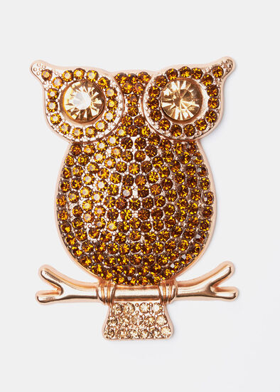 What A Hoot Brooch
