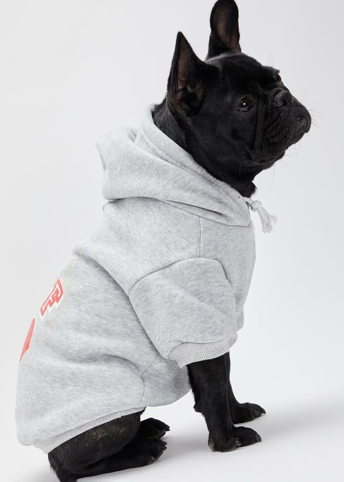 Bff Cotton Hooded Pet Sweater, , hi-res